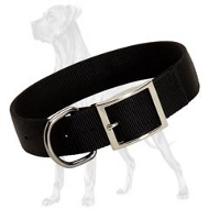 'Courageous Adventurer' Durable Nylon Great Dane Collar