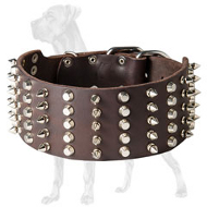 Extra Wide Spiked and Studded Collar for Great Dane