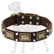 Chic Leather Great Dane Collar with Brass Plated Plates and Nickel Pyramids