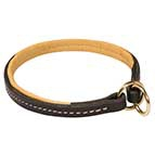 Reliable Great Dane Collar for Utmost Control over Your Dog
