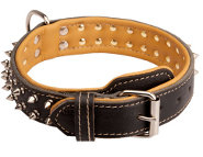 Comfortable Leather Great Dane Collar with Nickel Hardware