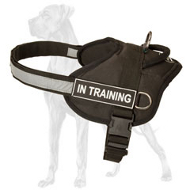 Nylon Dog Harness for Great Dane with ID Patches and reflective Trim