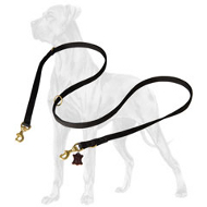 Any Weather Nylon Leash for Great Dane