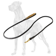 Super Durable Leather Leash for Great Dane