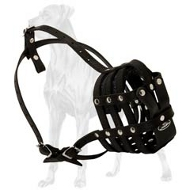 Durable Leather Muzzle Soft Inside for Great Dane