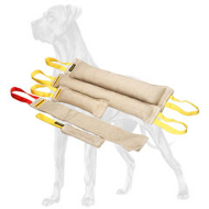 Set of 5 Professional Jute Bite Tools for Great Dane Puppy and Adult Training