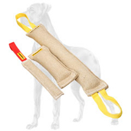 Basic Puppy Training Set of Three Jute Bite Tugs for Great Dane