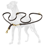 Strong Leather Great Dane Leash
