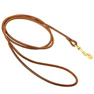 Leather Great Dane Leash for Dog Show