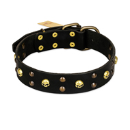 FDT Artisan 'Heavy Metal' Decorated Leather Great Dane Collar with Skulls and Studs 1 1/2 inch (40 mm)