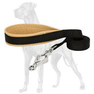 Comfortable Nylon Great Dane Leash with Padded Handle and HS Snap Hook