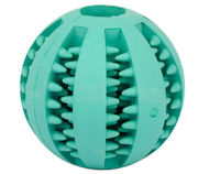 Round Ball Dog Chew Toy - Hygiene Dog Ball for Great Dane - Small