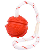 Similar to Everlasting Fun Ball on a Rope for Great Dane