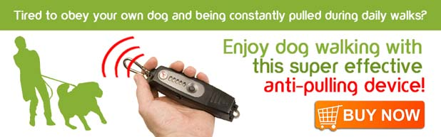 Anti-Dog-Pulling-Device-US2