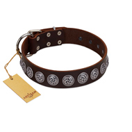 """Charming Circles"" FDT Artisan Brown Leather Great Dane Collar with Silver-like Studs"