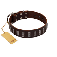 """Brown Lace"" Handmade FDT Artisan Brown Leather Great Dane Collar for Everyday Walks"