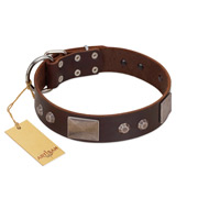 """Stone Stars"" Stylish Handmade FDT Artisan Brown Leather Great Dane Collar"