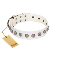 """Grandeur Dog"" FDT Artisan White Leather Great Dane Collar with Engraved Studs"