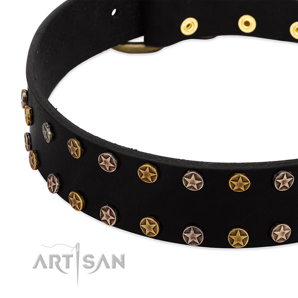 Stunning adornments on genuine leather collar for your pet