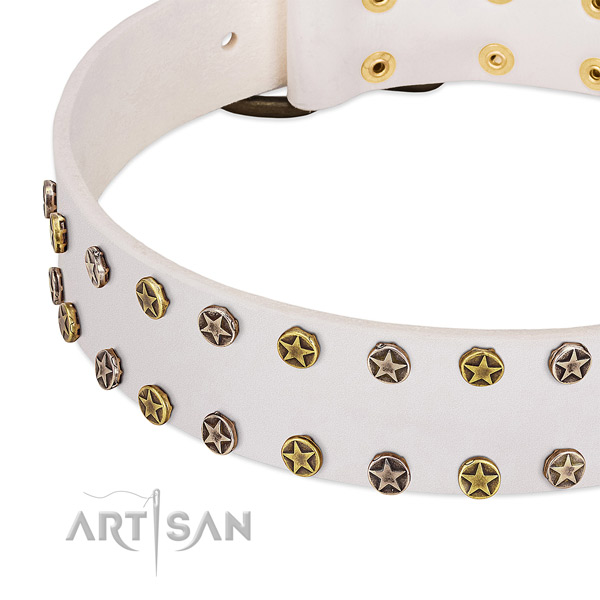 Impressive embellishments on full grain leather collar for your canine