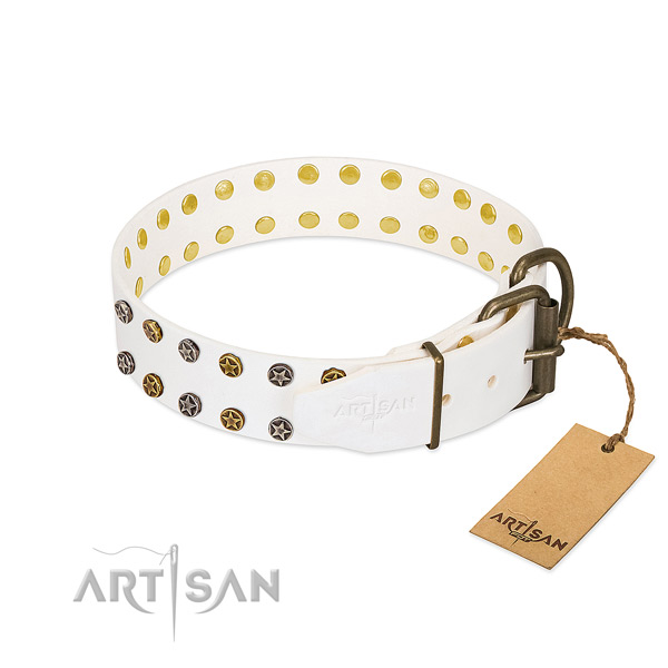 Full grain natural leather collar with unusual decorations for your four-legged friend