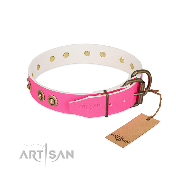 Natural genuine leather dog collar with durable D-ring and studs
