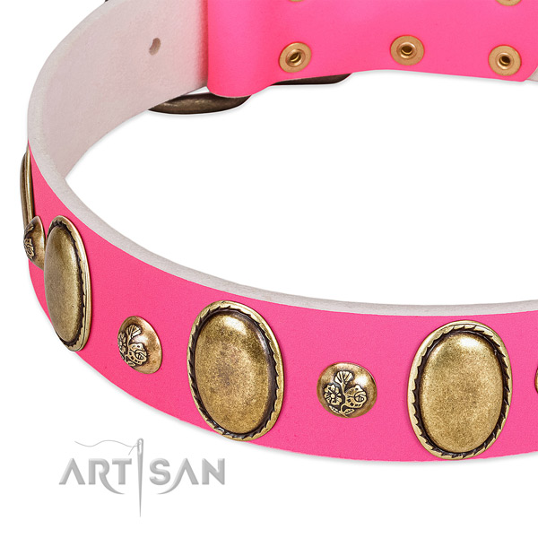 Full grain leather dog collar with awesome decorations
