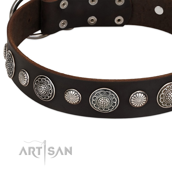 Full grain leather collar with corrosion proof D-ring for your beautiful pet