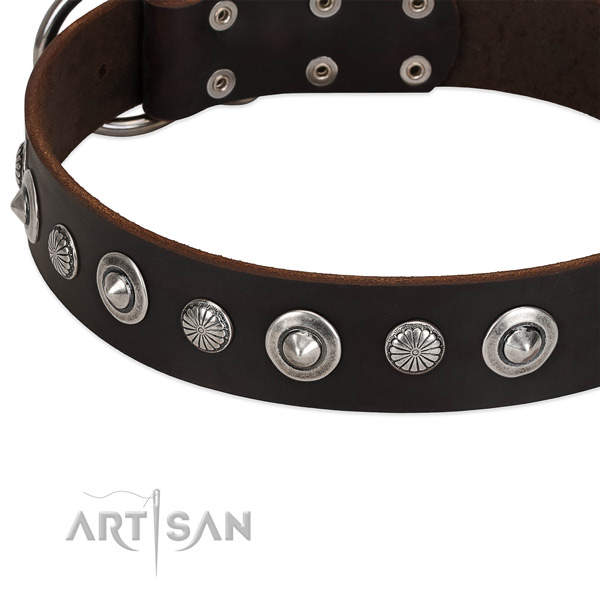 Fashionable studded dog collar of fine quality full grain natural leather