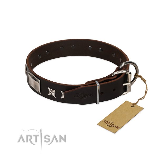 Top quality collar of full grain natural leather for your impressive canine