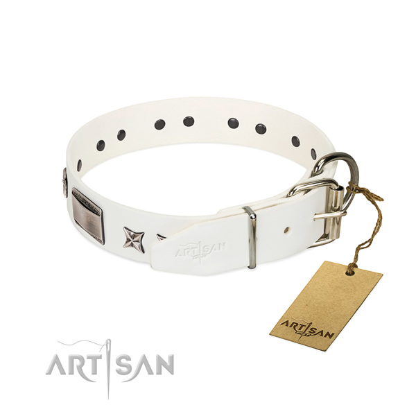 Perfect fit collar of natural leather for your lovely pet