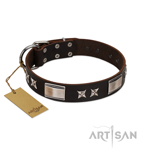 Remarkable dog collar of genuine leather