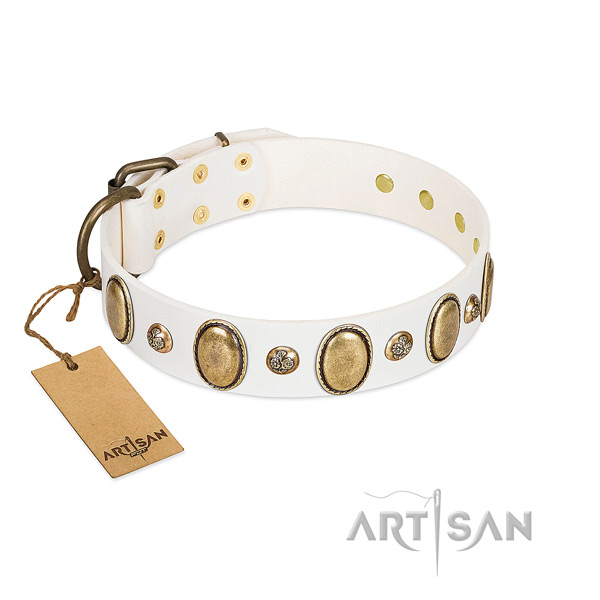 Leather dog collar of quality material with fashionable studs
