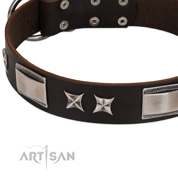 High quality full grain genuine leather dog collar with corrosion proof fittings