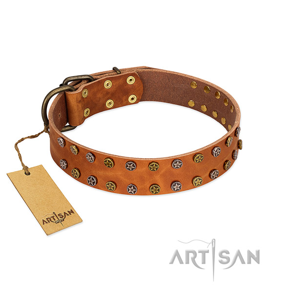 Everyday walking top notch full grain leather dog collar with decorations