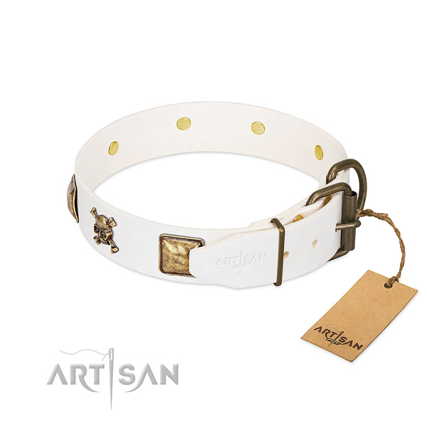 Remarkable natural leather dog collar with strong adornments