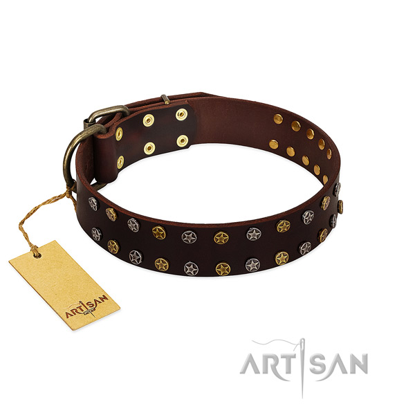 Daily use reliable full grain natural leather dog collar with adornments