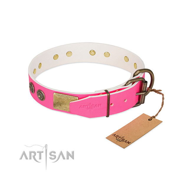 Durable fittings on natural genuine leather collar for fancy walking your canine