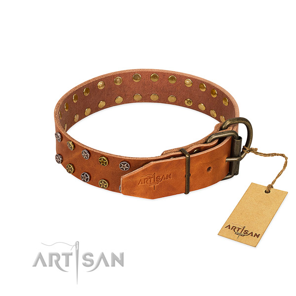 Daily use full grain leather dog collar with impressive adornments