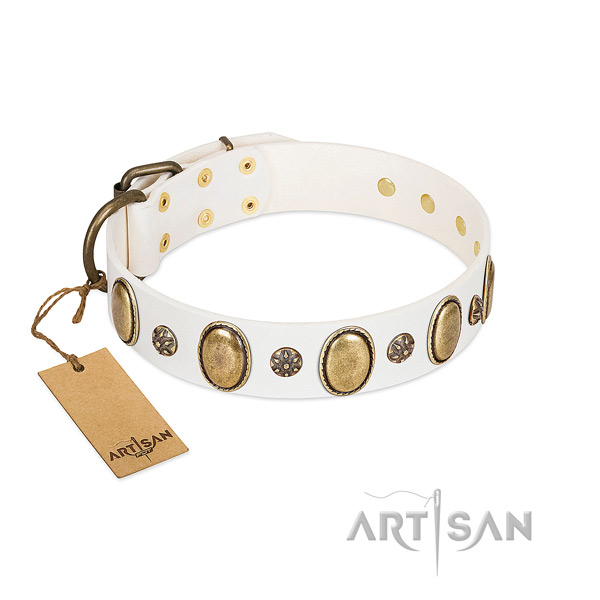 Everyday use top notch leather dog collar with studs