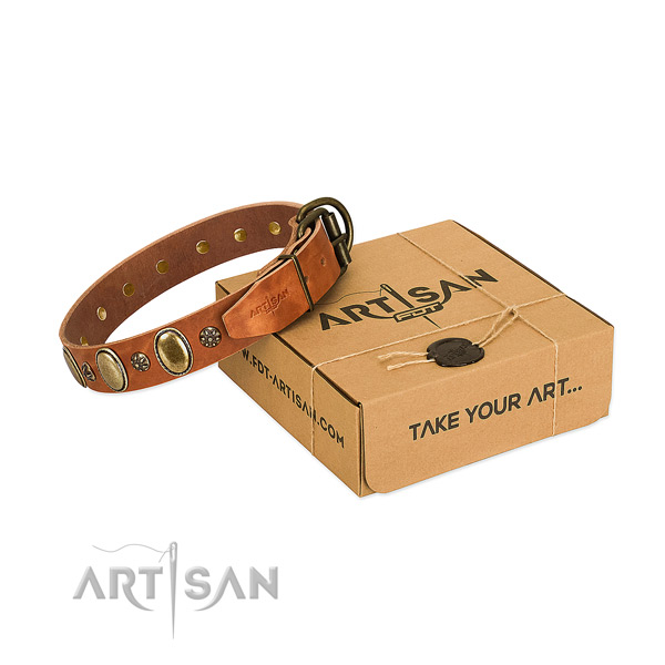 Fancy walking high quality full grain natural leather dog collar with studs