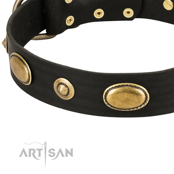 Strong D-ring on leather dog collar for your four-legged friend