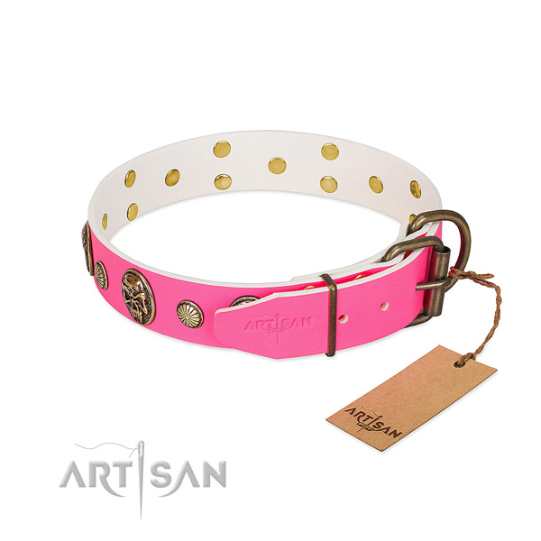 Corrosion proof traditional buckle on leather dog collar for your pet