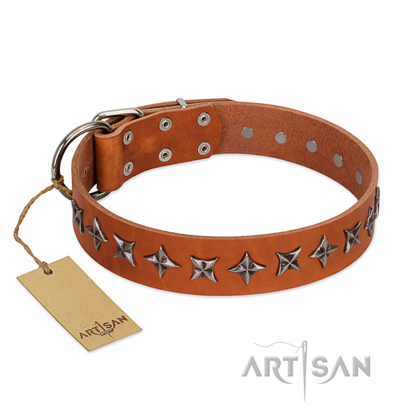 Everyday use dog collar of durable full grain leather with embellishments