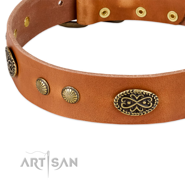 Rust resistant buckle on full grain natural leather dog collar for your doggie