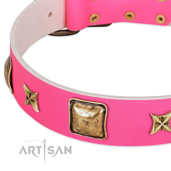 Full grain leather dog collar with stunning decorations