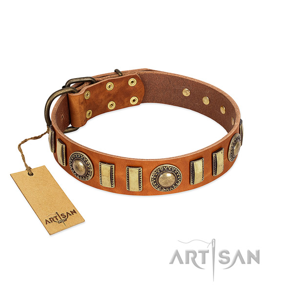 Best quality full grain natural leather dog collar with durable traditional buckle