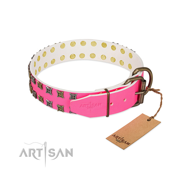 Full grain leather collar with stunning adornments for your doggie