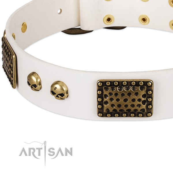 Rust resistant adornments on natural leather dog collar for your four-legged friend