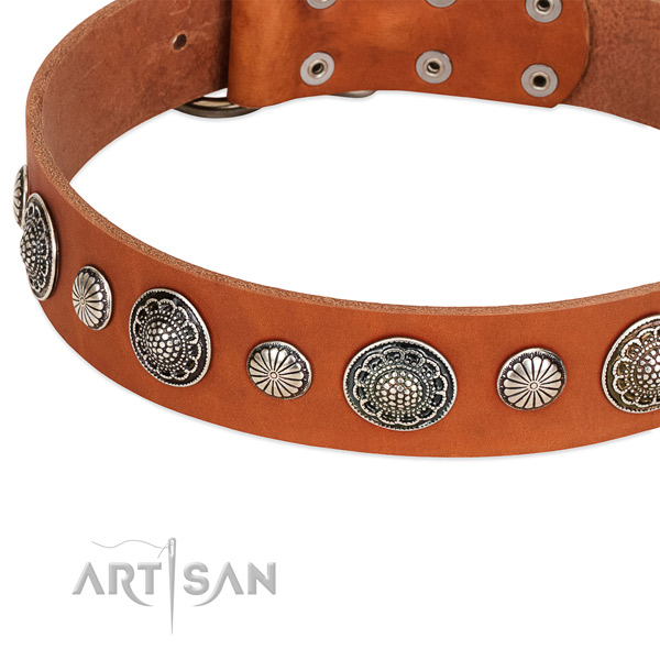 Full grain leather collar with reliable D-ring for your lovely four-legged friend